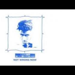 Imagen de la canción 'Not Wrong Now'
