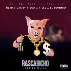 Imagen de la canción 'Rascabicho'