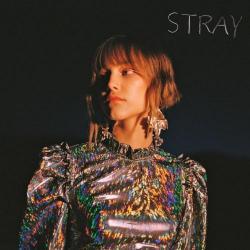 Stray (en español)