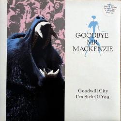 Goodwill City