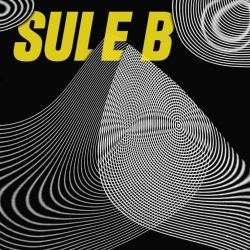 Heaven - Sule B