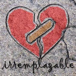 Imagen de la canción 'Irremplazable'