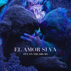 Imagen de la canción 'El Amor Sí Va'
