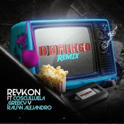 Imagen de la canción 'Domingo Remix'