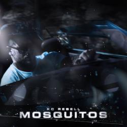 Imagen de la canción 'Mosquitos'