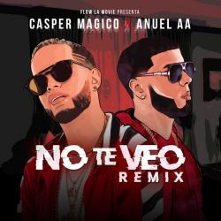 Imagen de la canción 'No Te Veo Remix'