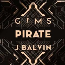 Imagen de la canción 'Pirate'