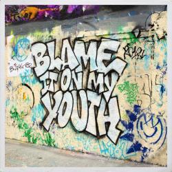 Imagen de la canción 'Blame It On My Youth'