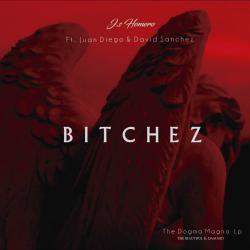 Imagen de la canción 'Bitchez'