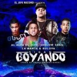 Imagen de la canción 'Siga Boyando'