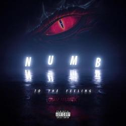 Imagen de la canción 'Numb to the Feeling'