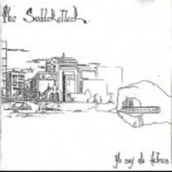 Imagen de la canción 'Nunca más pasar'