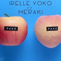 Imagen de la canción 'Fake'
