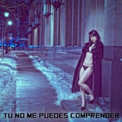 Imagen de la canción 'Tu No Me Puedes Comprender'