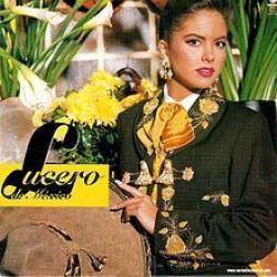 Imagen de la canción 'Contigo y sin ti'