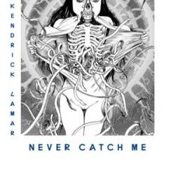 Imagen de la canción 'Never Catch Me'