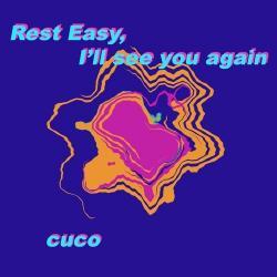 Imagen de la canción 'Rest Easy, I'll See You Again'