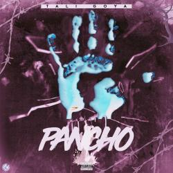 Imagen de la canción 'Pancho'