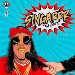 Imagen de la canción 'Singarrr'