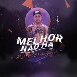 Imagen de la canción 'Melhor Não Há'