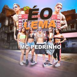 Imagen de la canción 'É o Lema'