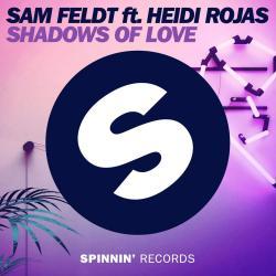 Imagen de la canción 'Shadows Of Love'