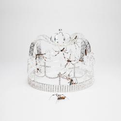 Imagen de la canción 'You should see me in a crown[live from Ellen]'