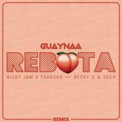 Imagen de la canción 'Rebota Remix'
