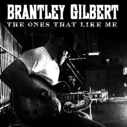Imagen de la canción 'The Ones That Like Me'