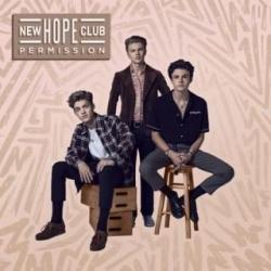 Imagen de la canción 'Permission'