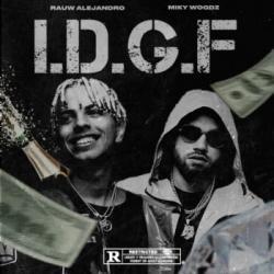 I.D.G.F