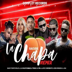 Sacude La Chapa Remix - Toxic Crow