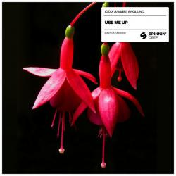 Use Me Up Extended Mix - Anabel Englund