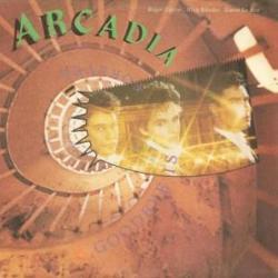 Goodbye Is Forever - Arcadia