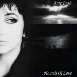 Imagen de la canción 'Hounds Of Love'