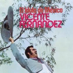 Si acaso vuelves - Vicente Fernández