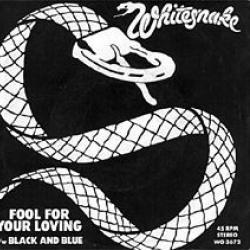 Imagen de la canción 'Fool For Your Loving'