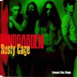 Imagen de la canción 'Rusty Cage'