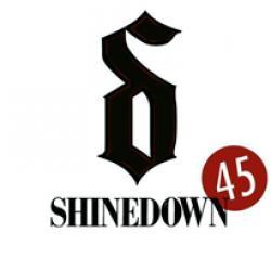 Imagen de la canción '45'