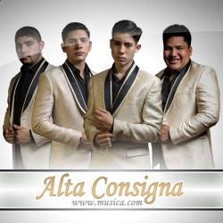 Alta Consigna