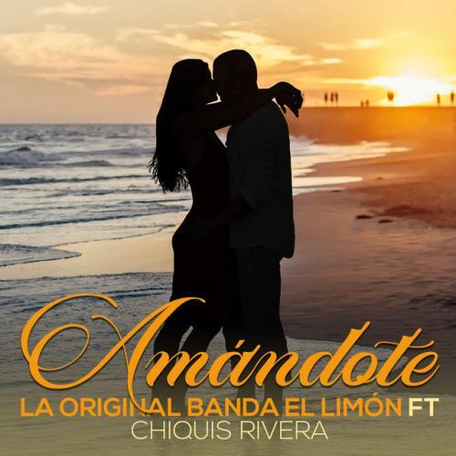 Amándote (La Original Banda El Limón)