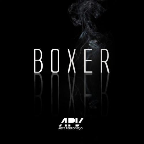 Boxer (Letra/Lyrics) - Arce | Musica.com