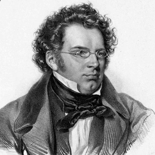 Franz Peter Schubert - Ave Maria
