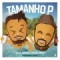 Tamanho P (ft.  Thiago Brava)