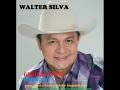 Walter Silva