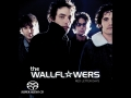 Wallflowers, the