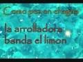 Arrolladora Banda El Limón - Como Pez En el Agua