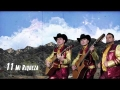 Los Plebes Del Rancho de Ariel Camacho - Mi Riqueza