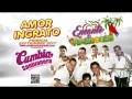 Encanto De Amazonas - Amor Ingrato