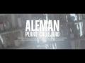 Alemán - Perro Callejero